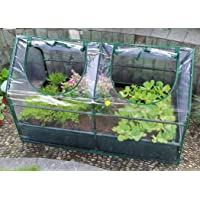 Zenport SH3212A+BTP Garden Raised Bed and Cold Frame Greenhouse Cloche for Easy Access Protected Gardening