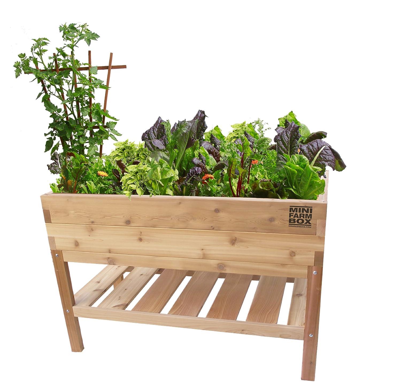 Amazon Waist High Table Garden Raised Garden Kits Garden