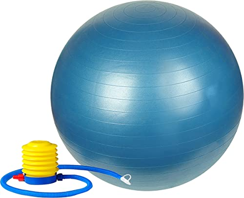 Sunny Health Fitness Anti-Burst Gym Ball