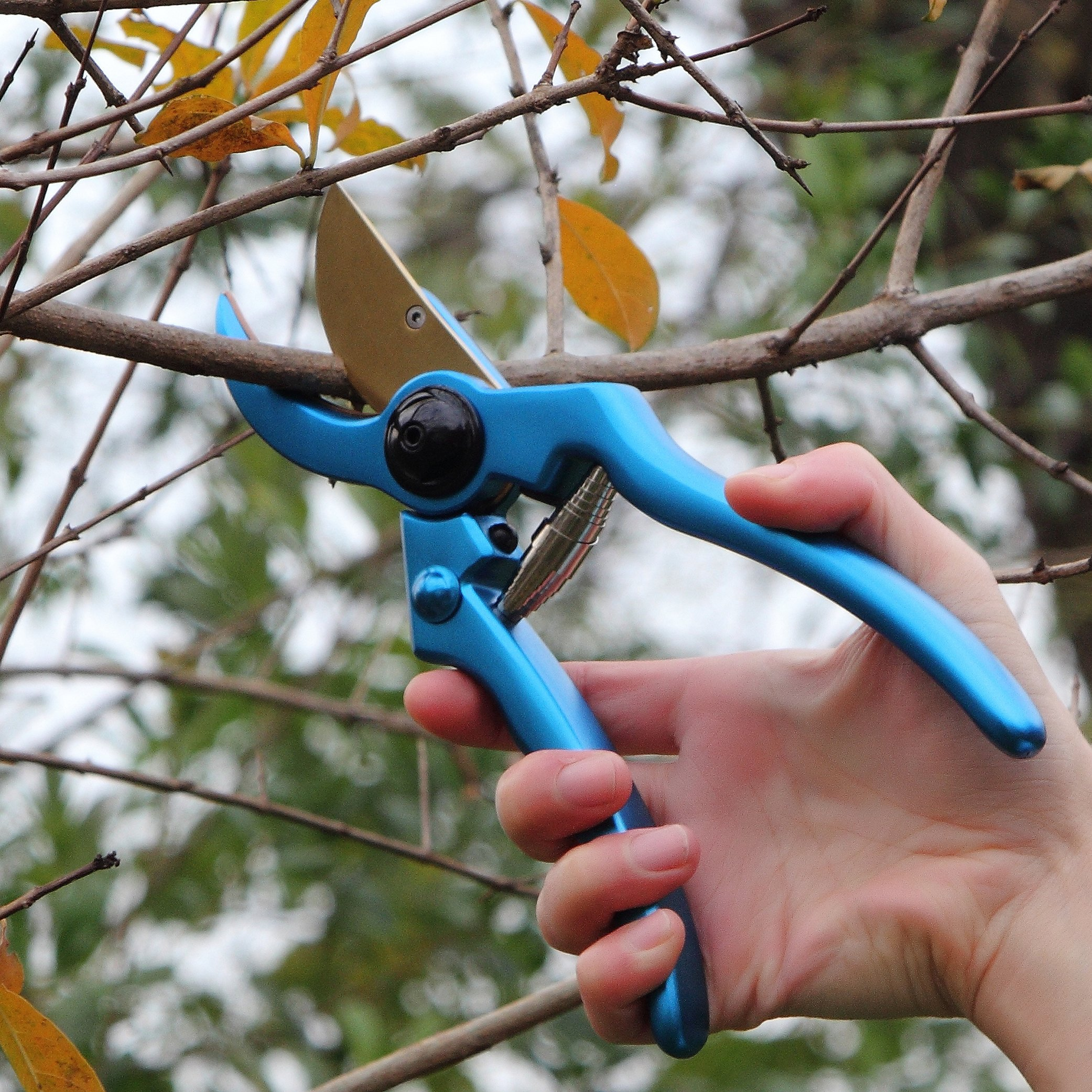 Profession Aluminum Garden Pruning Shears – Perfect Bypass Tree Trimmer, Garden Shears, Hand Pruner with Safety Lock System (Blue)