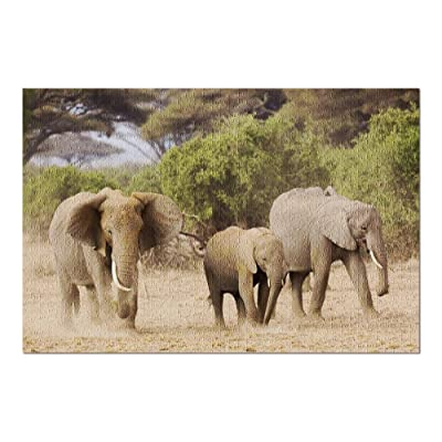 African Elephants Walking in a Dusty Field with Trees in Amboseli National Park in Kenya, Africa 9018061 (Premium 1000 Piece Jigsaw Puzzle for Adults, 20x30, Made in USA!): Toys & Games