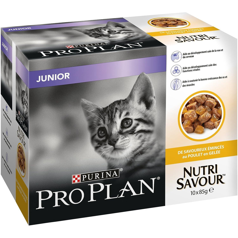 PRO PLAN Nutrisavour Junior - Au Poulet en gelée - Pochons pour chaton 10 x 85 g Purina Pro Plan 12310842