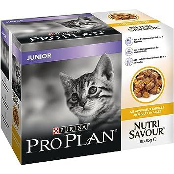Purina Pro Plan nutrisavour Junior pochons AU Pollo en gelatina para Gato 10 x 85 g: Amazon.es: Productos para mascotas