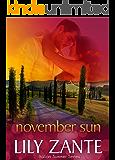 November Sun (Italian Summer Book 5)