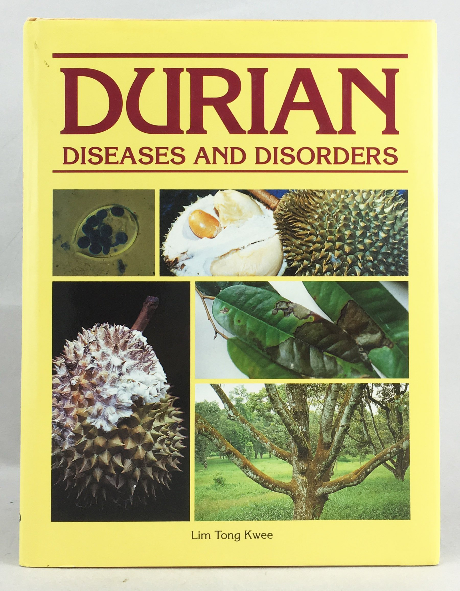 Durian: Diseases and Disorders