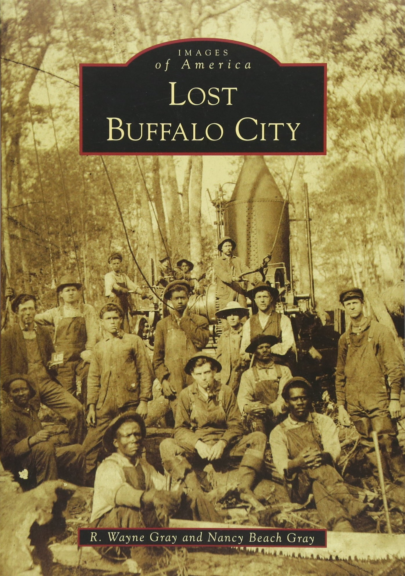 Download Lost Buffalo City (Images of America) pdf
