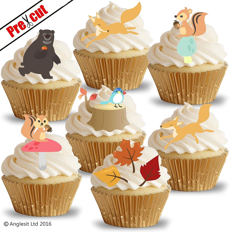 PRECUT Girls 1st Birthday 12 Edible Cupcake Toppers Cake ...
