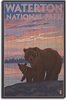 product image for Lantern Press Waterton National Park, Canada - Bear and Cub (10x15 Wood Wall Sign, Wall Decor Ready to Hang)