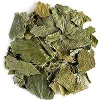Grosella Negra Orgánica Infusión Hojas - Ribes Nigrum - Recién Recolectada Del Grosellero 50g