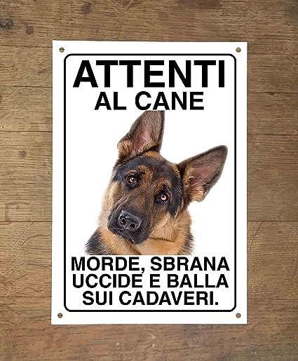 Pastore Tedesco Attenti Al Cane Morde Sbrana Uccide E Balla Sui