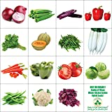 Only For Organic Combo Of Fifteen Winter Kitchen Garden Hybrid Seeds
