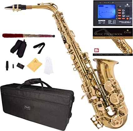 Mouthpiece Cushion Stand Cleaning Cloths Pocketbook 10 Reeds Mendini by Cecilio Gold Lacquer E Flat Alto Saxophone with Hard Case Mouthpiece Mouthpiece Brush and 1-Year Warranty