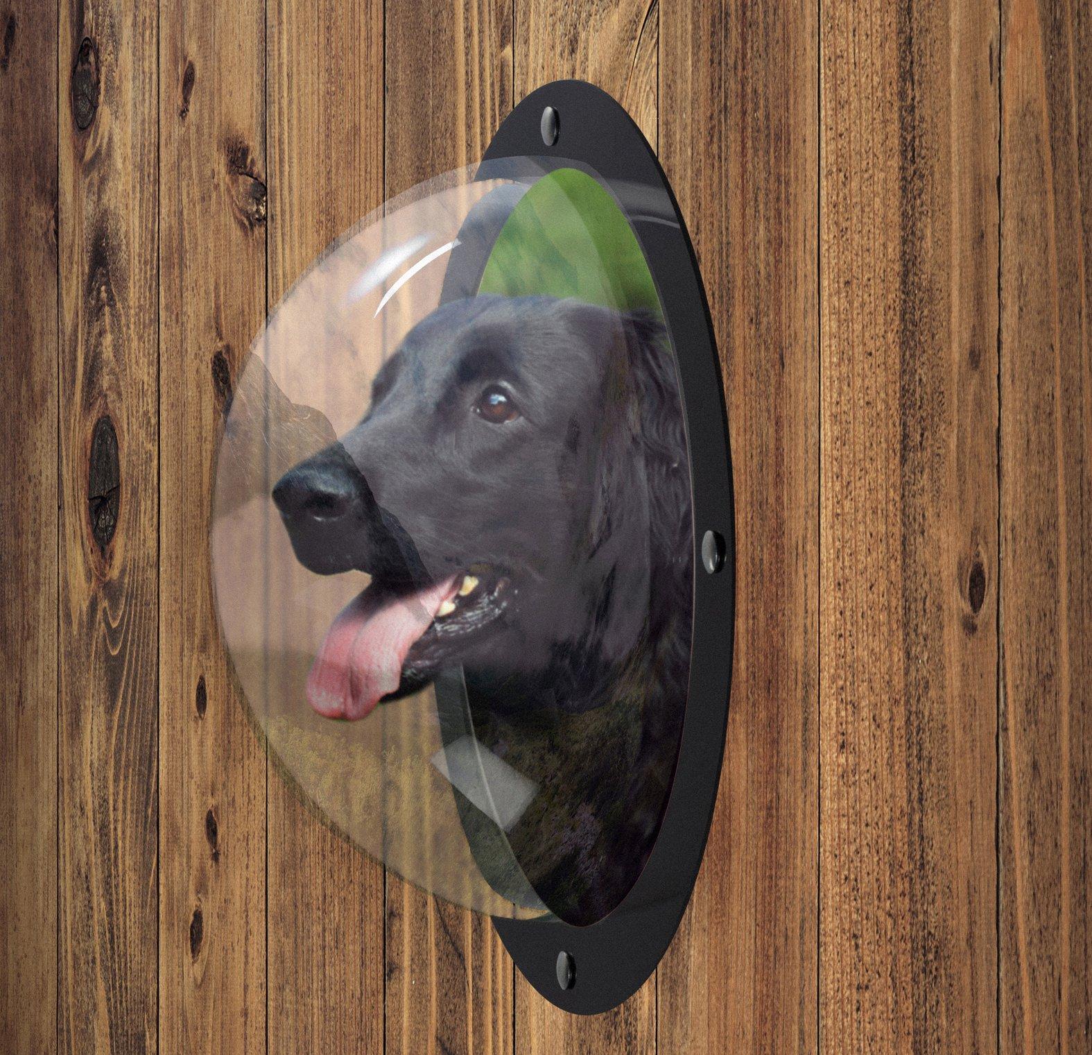 FurryFriends Pet Window - Acrylic Dog Window/Peep Hole for Door or Gate by FurryFriends (Image #2)