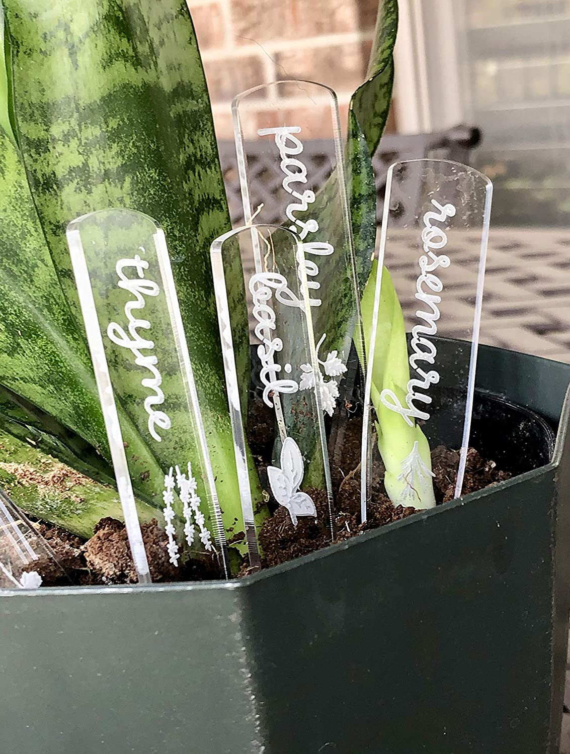 Herb Markers set of 5 Clear Laser Cut acrylic BASIL ROSEMARY CILANTRO THYME PARSLEY