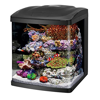 Fish & Aquariums On Off Switch For Biocube Nanocube Red Sea Max Hood Selected Material
