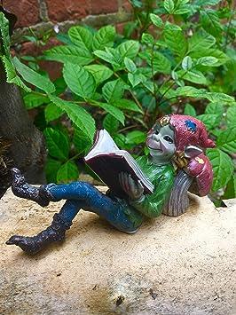 Fabuloso libro de lectura, decoración de jardín, duende duende: Amazon.es: Hogar