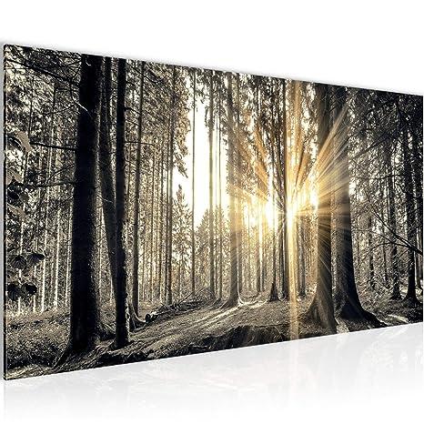 Amazon.de: Bilder Wald Landschaft Wandbild 100 x 40 cm Vlies ...