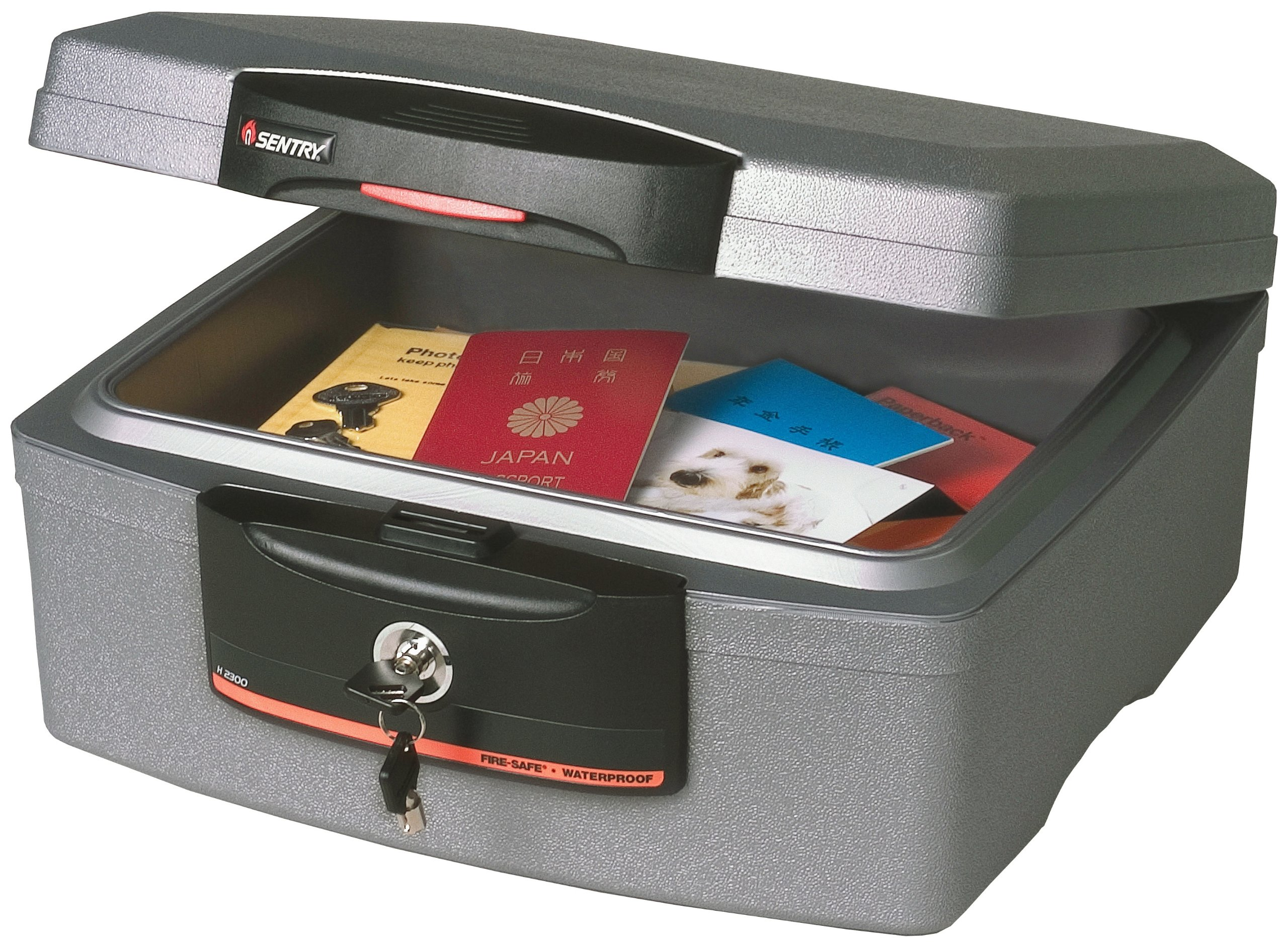 SentrySafe H2300  0.36 Cubic Foot Fire-Safe Waterproof Chest, Silver Gray