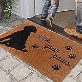 Indoor Door Mat Funny Doormat for Entrance Brown Wipe Your Paws Dog Decor Welcome Mats for Front Door Shoe Mat Cabin Decor Fl