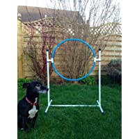 freestanding training hoop for dog agility (due to amazons new postage policy we can only post this item to mainland uk (England, Wales, and Scotland only))