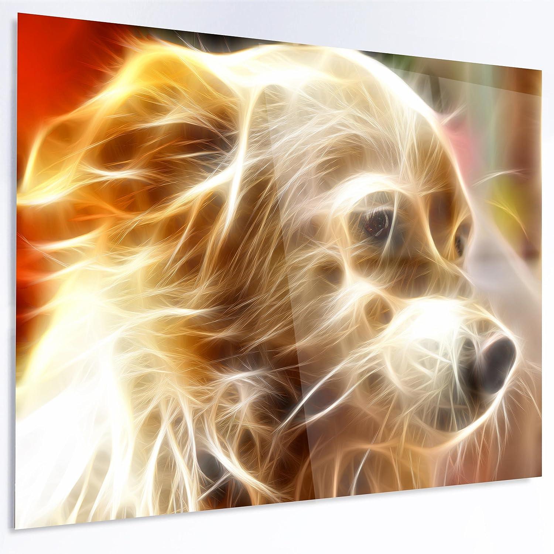 Large Animal Glossy Metal Wall Art Designart Glowing Brown Dog Head 60x28-5 Equal Panels,
