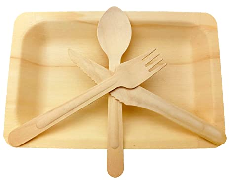 Wooden Disposable Cutlery Set Of 50 Plate50 Forks 50 Spoons 50 Knives 6 Inch Utensilsbiodegradable Compostable Dinnerwareweddingbbq Catering