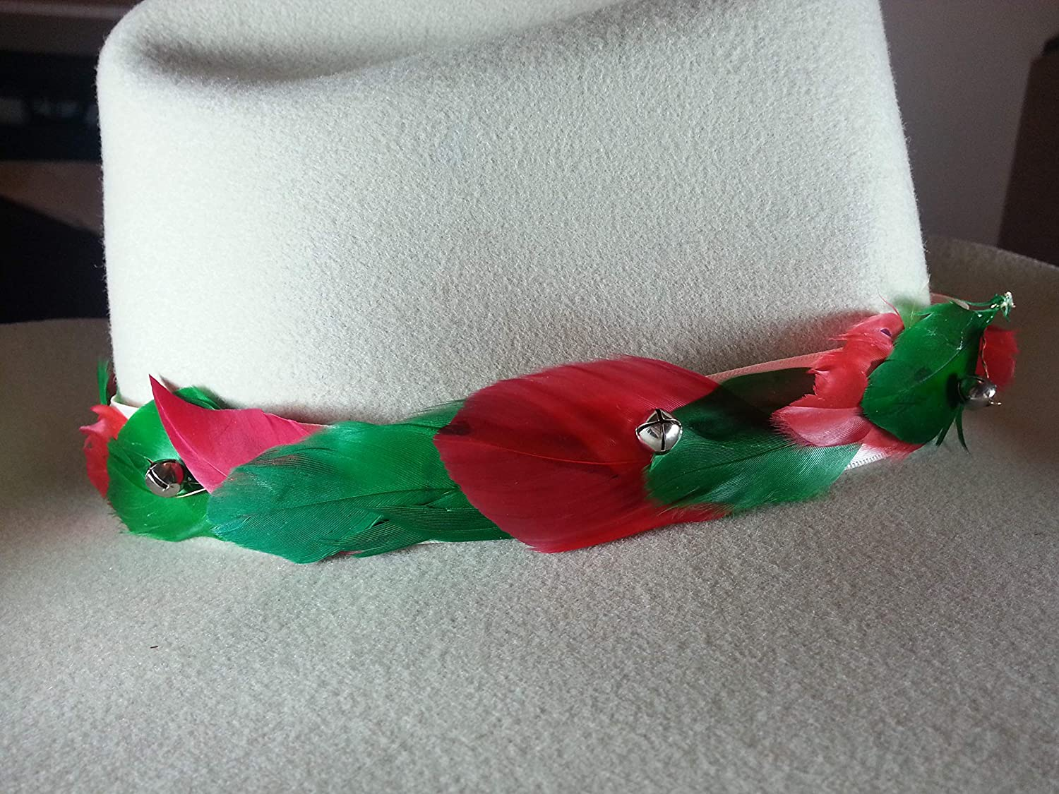 Turkey Hat Band Feather