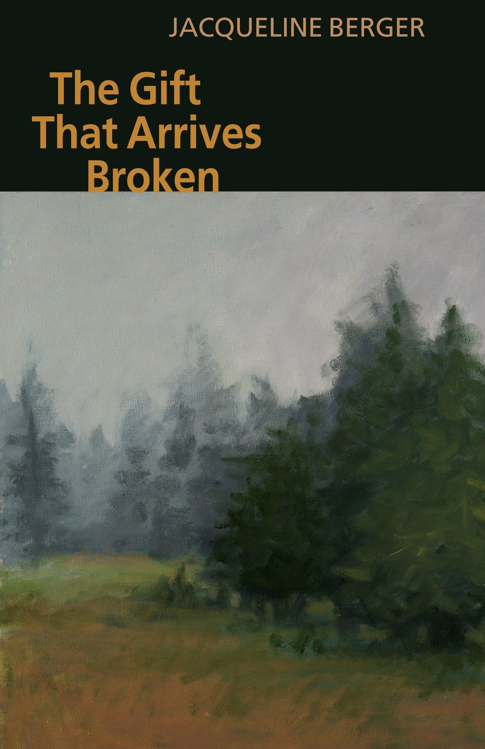 Download The Gift That Arrives Broken ebook