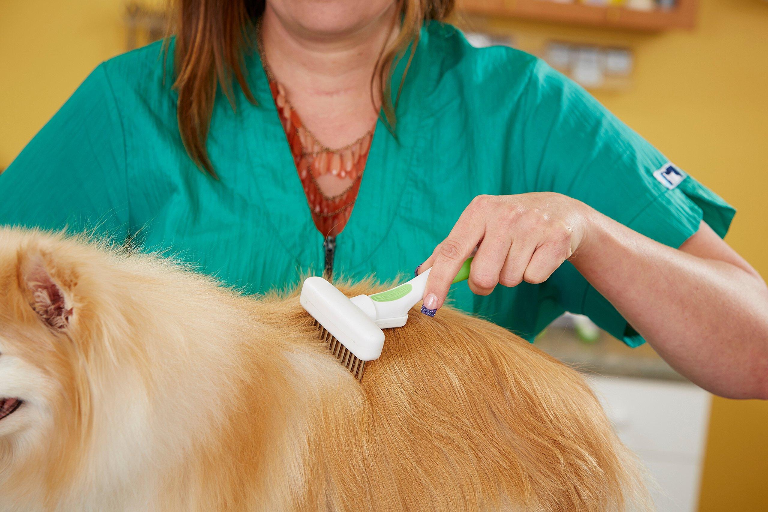 Andis Pet Flexible Dog Rake (65735) by Andis