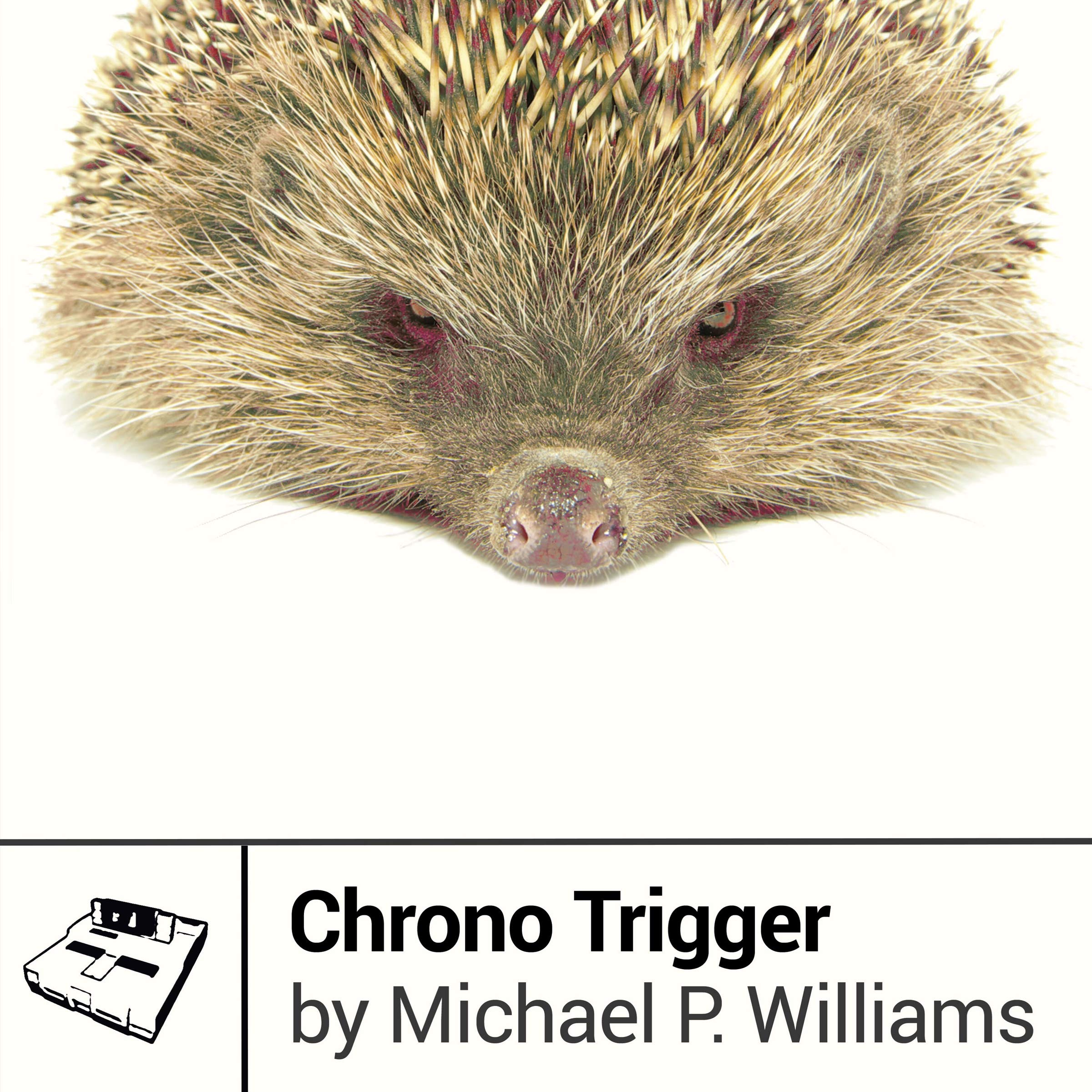 Chrono Trigger: Boss Fight Books
