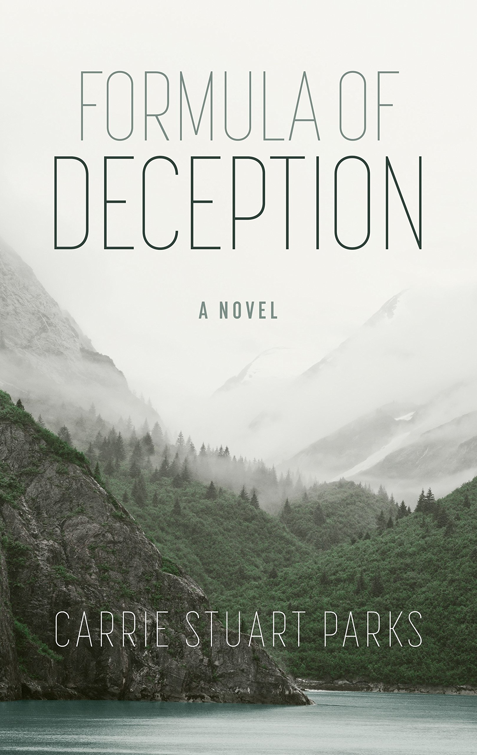 Download Formula of Deception (Thorndike Press Large Print Christian Mystery) ePub fb2 book