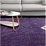 JODELA Carpet/Super Soft Rugs for Living Room Fluffy Shag Rugs for Bedroom Shaggy Nursery Rug and Kids Rug Indoor Modern Area