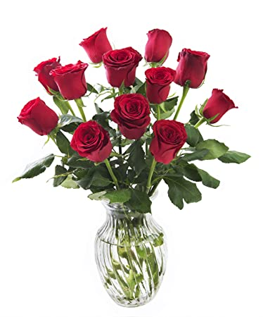 kabloom romantic red rose bouquet 12 fresh cut red roses long stemmed with