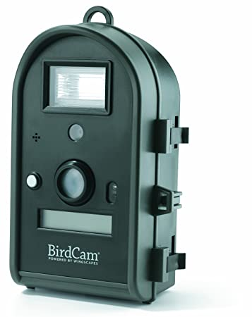 Amazon Com Wingscapes Birdcam With Flash