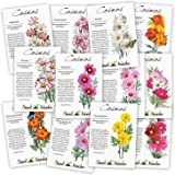 Crazy Cosmos Seed Packet Assortment (12 Individual Packets) Open Pollinated Seeds by Seed Needs