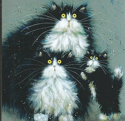 purrenthood Fluffy blanco y negro gato familia cualquier ocasión Tarjeta de felicitación en blanco: Amazon.es: Oficina y papelería