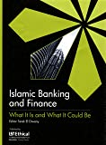 Islamic Banking and Finance: What It Is and What It Could Be