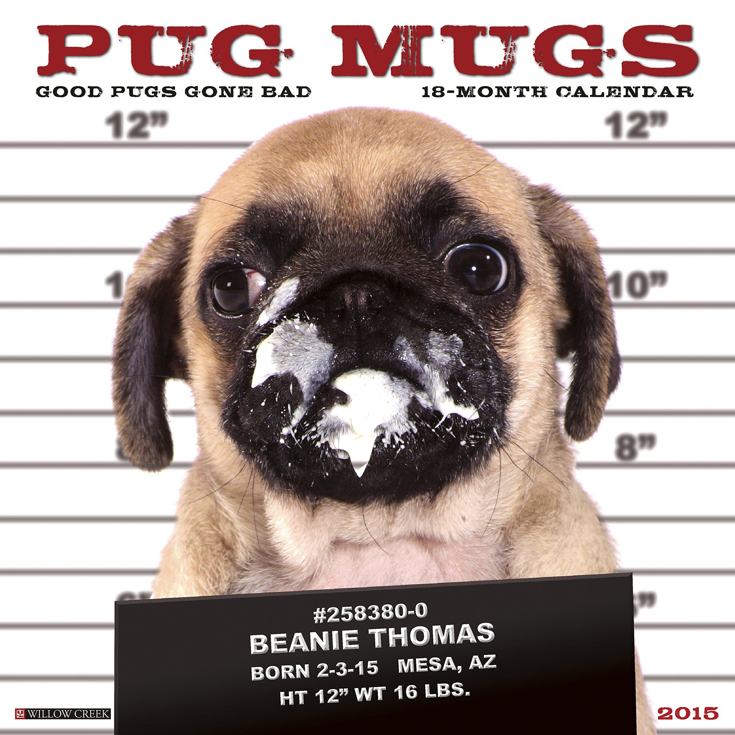 Download 2017 Pug Mugs Mini Wall Calendar pdf