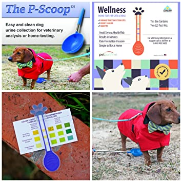 PetConfirm - Allgemeine Wellness Tests und P-Scoop Urinsammler Combo ...