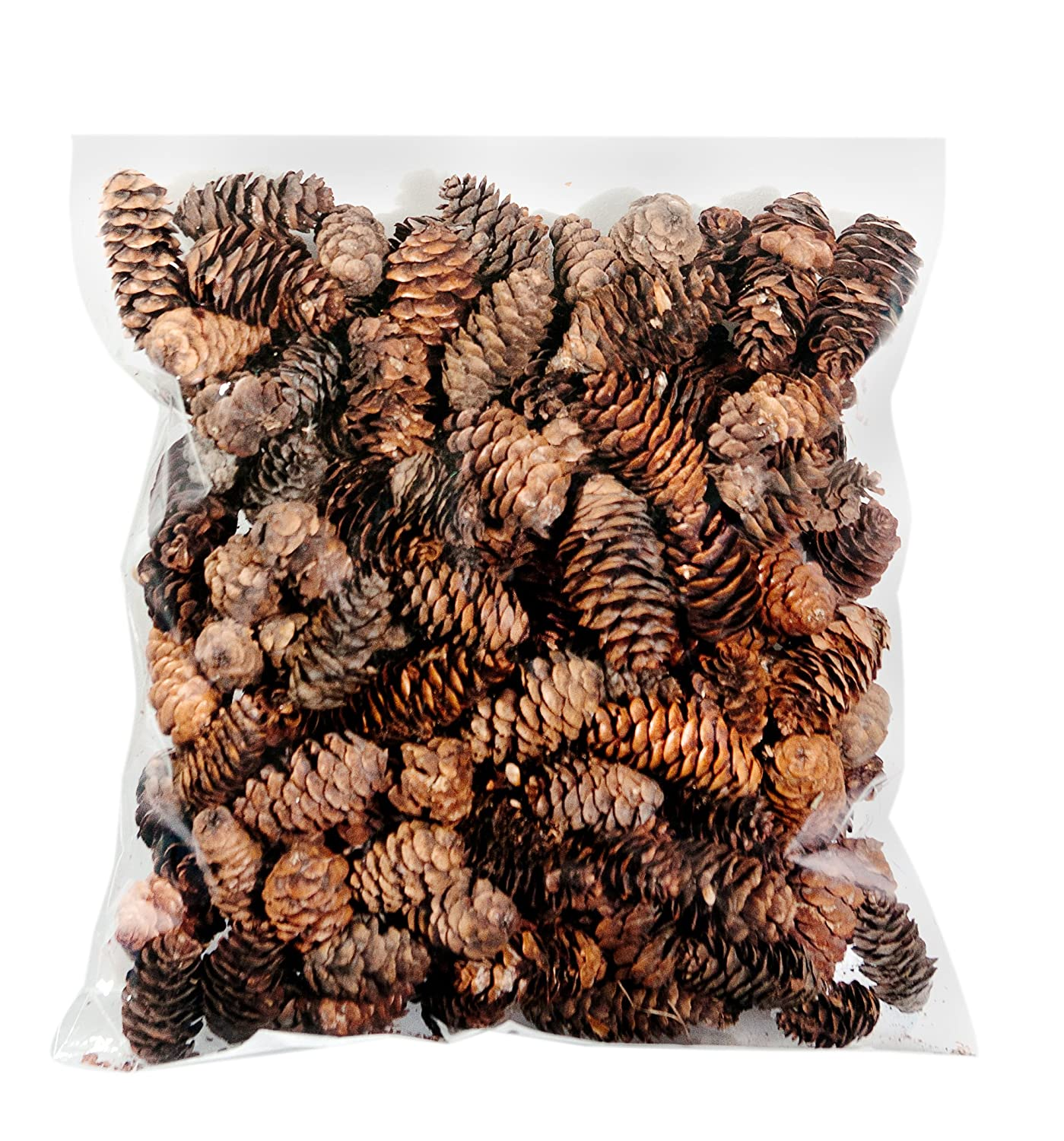 Decorative pine cones