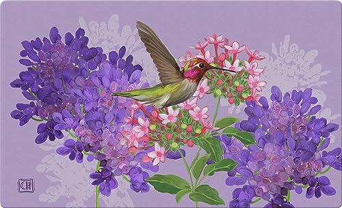 Toland Home Garden Hummingbird and Flowers 18 x 30 Inch Decorative Floral Floor Mat Bird Flower Doormat