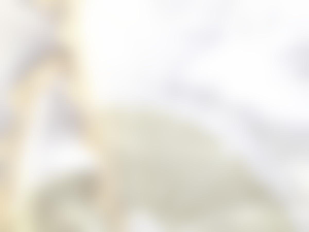 Muselina de algodón para bebés con puntilla Modelo Lemon: Amazon.es: Handmade