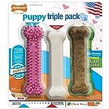 Nylabone NRP002VPP Puppy Chew Variety Toy & Treat