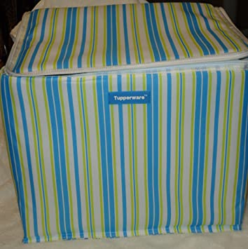 Tupperware Insulated Huge Striped Picnic Bag Cooler Blue Green White
