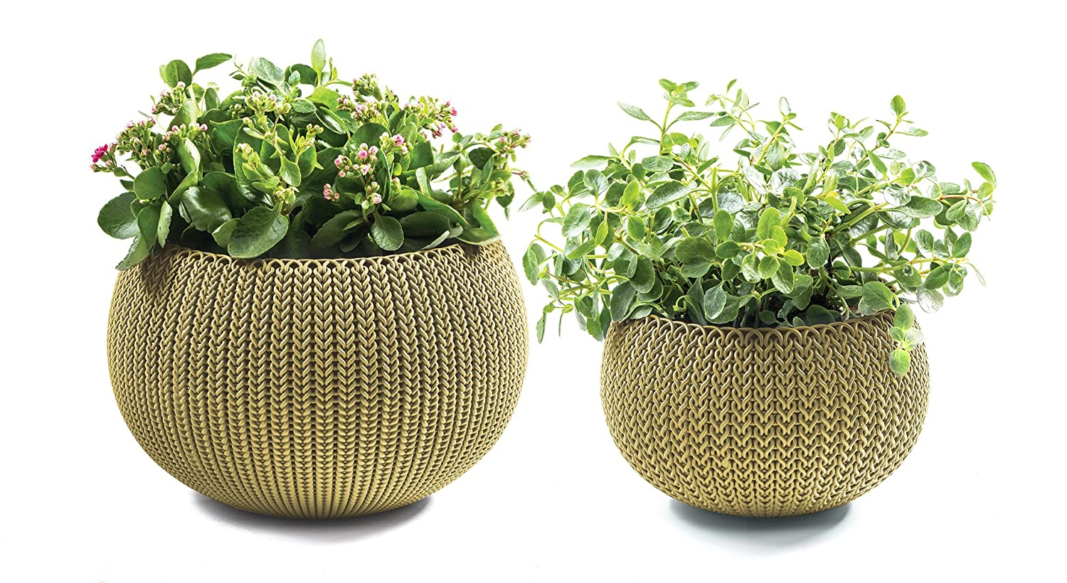 Amazon.com : Keter Cozies Plastic Planters Set Of 2, Knit Texture, Small U0026  Medium Pots With Removable Liners, Citrus Green : Garden U0026 Outdoor