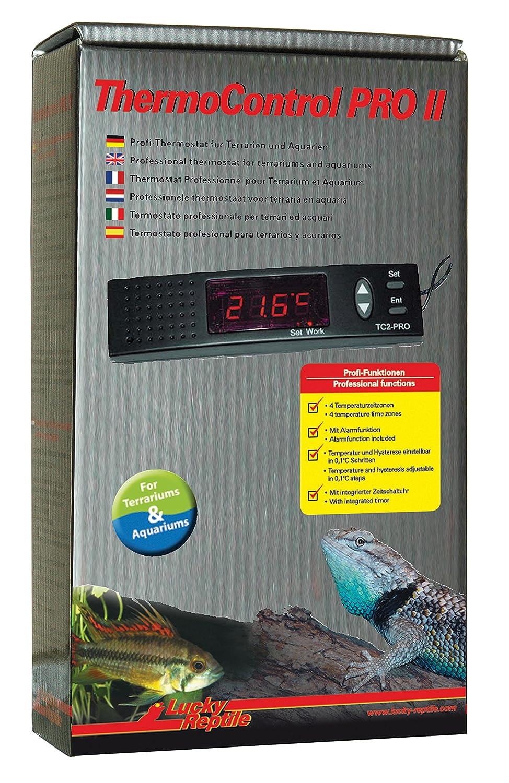 thermostat pour terrarium