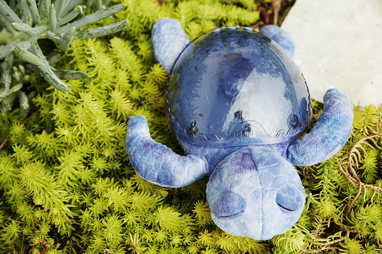 Cloud B 7423 PR Nachtlicht Tranquil Turtle ozeanblau