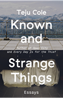 Every day is for the thief fiction kindle edition by teju cole known and strange things essays fandeluxe Gallery
