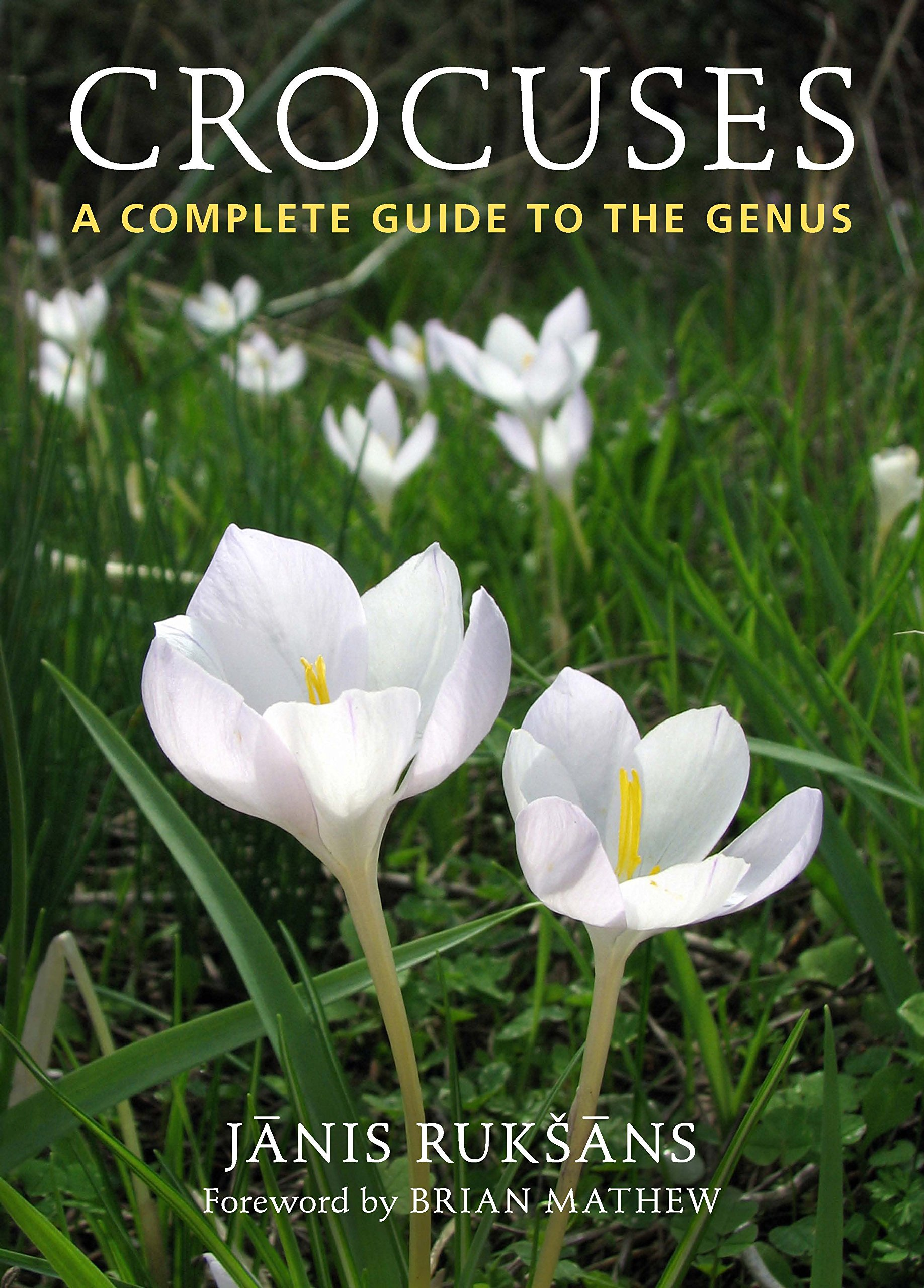 Crocuses a Compete Guide to the Genus: A Complete Guide to the Genus