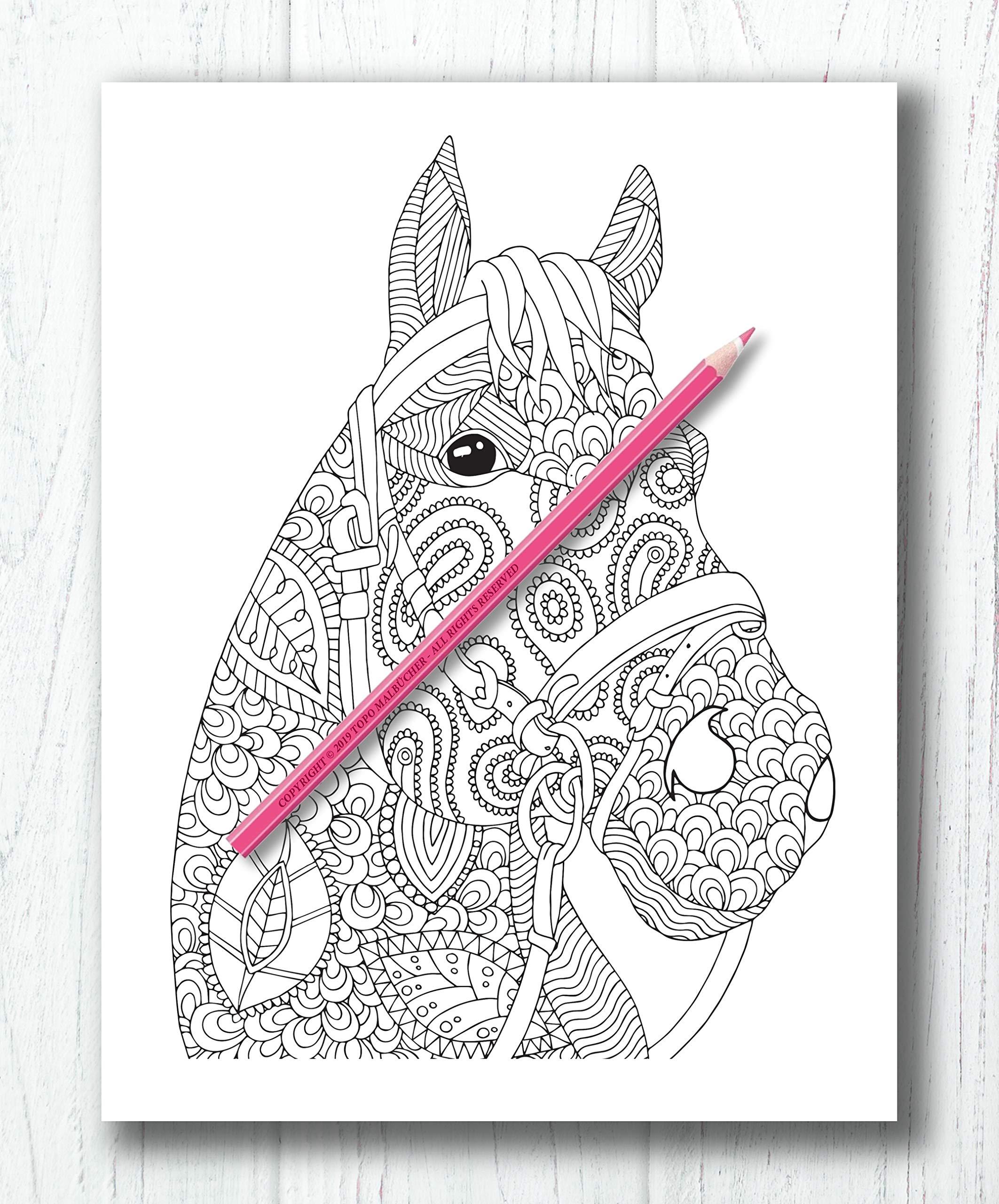 Pferde Malbuch: Malbuch für Erwachsene mit traumhaften